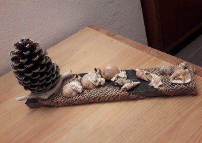 Conchiglie e pigna su mattonella